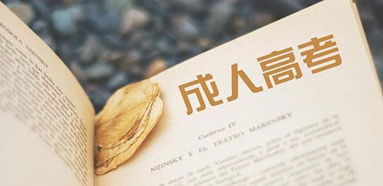 2020年广东成人高考复习大全